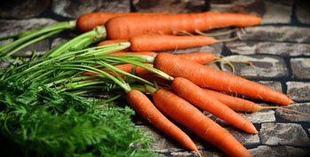 Macronutrients Vitamin A Carrots
