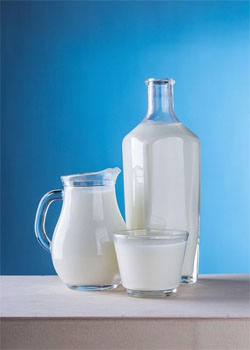 Macronutrients Vitamin D Milk